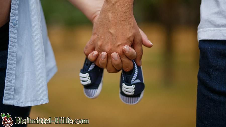 Gemeinsam durch die Schwangerschaft