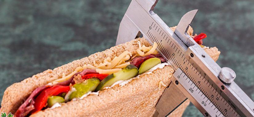 Kalorien - Gefährlich wenig Wissen