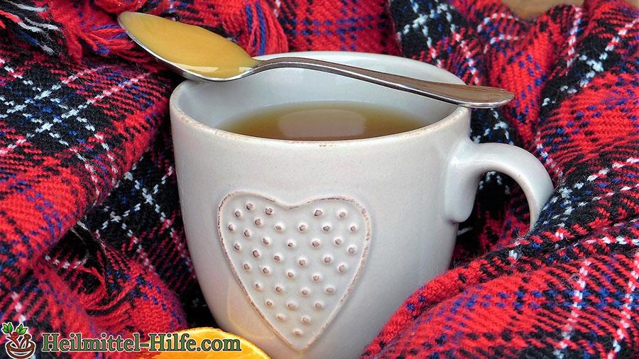 Hausmittel Erkältung